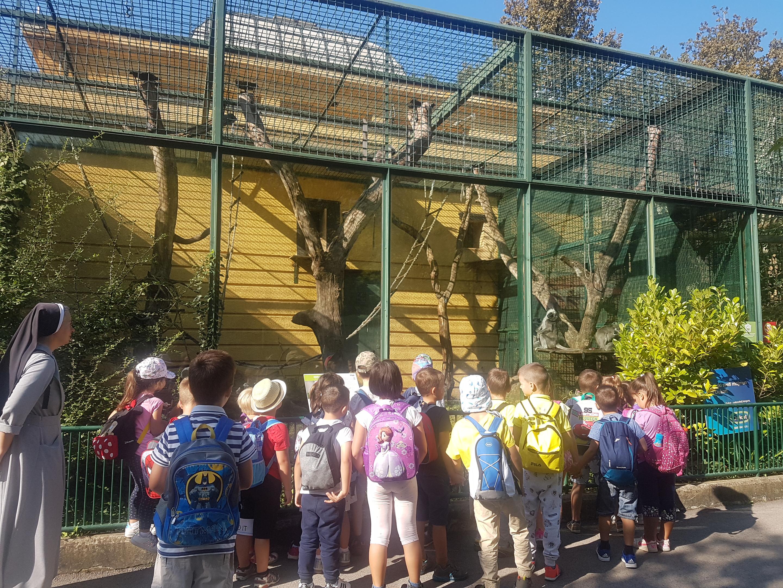 Posjet zoo vrtu (1)