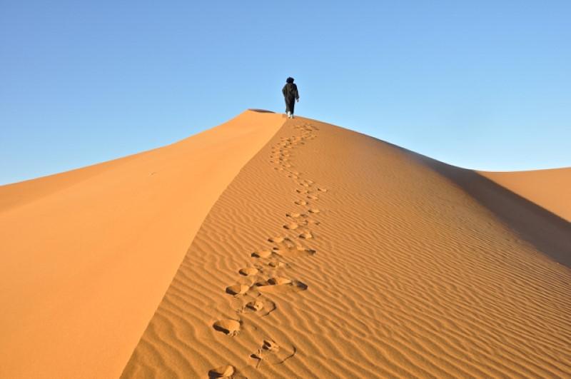 Glas viče u pustinji