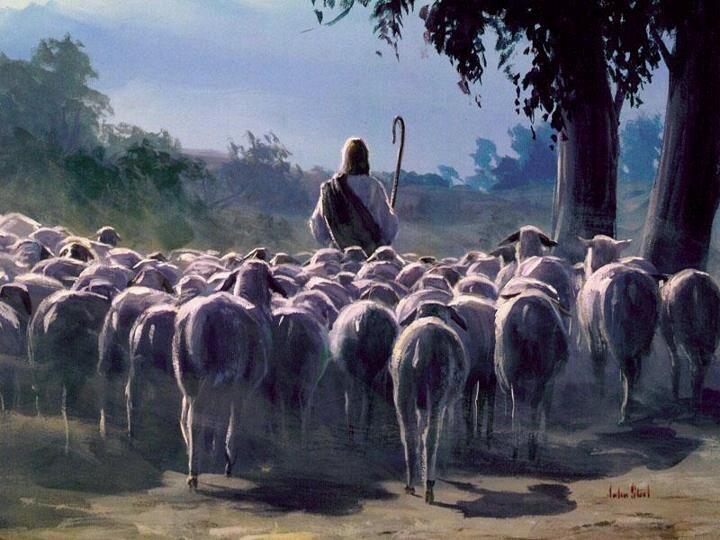On ovce svoje zove imenom!