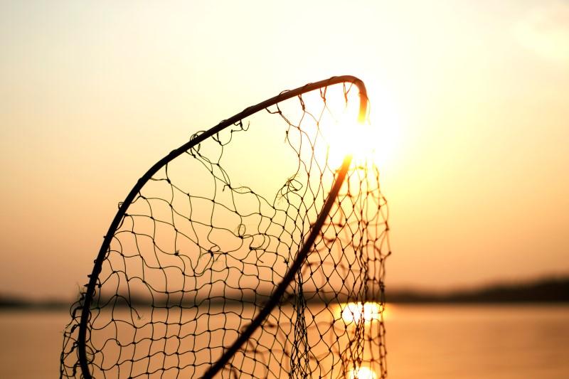 Kraljevstvo nebesko i nerazderive mreže